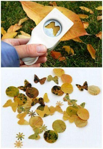 papillons feuilles séchées